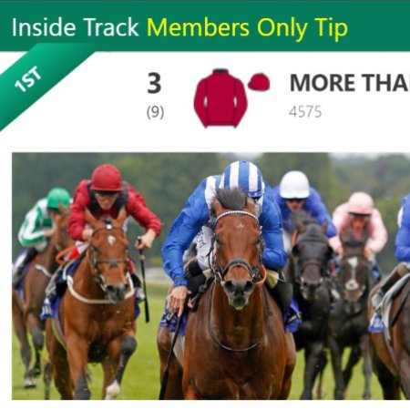 Horse Racing Marked Cards