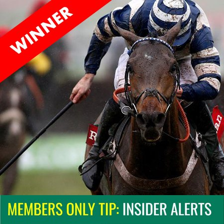 Never Miss Another Winning Horse Racing Tip